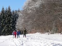 Langlauf Ski fahren im Winterurlaub Bayern